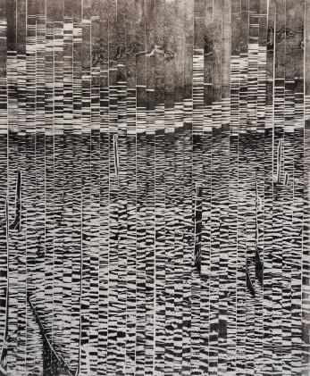 Linocut. 2016. 70x100 cm.